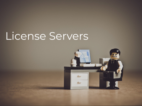 License servers ticking time bomb for software business